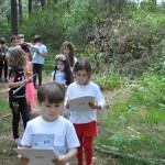 Nature Walk2 (2)